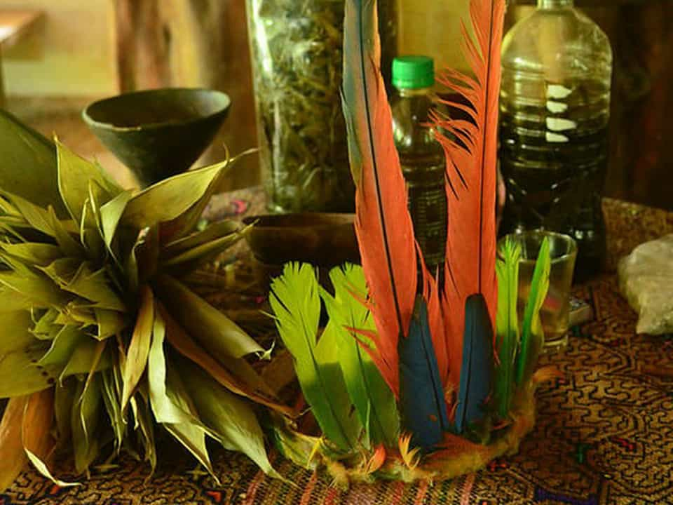 Assistance during Ayahuasca ceremonies