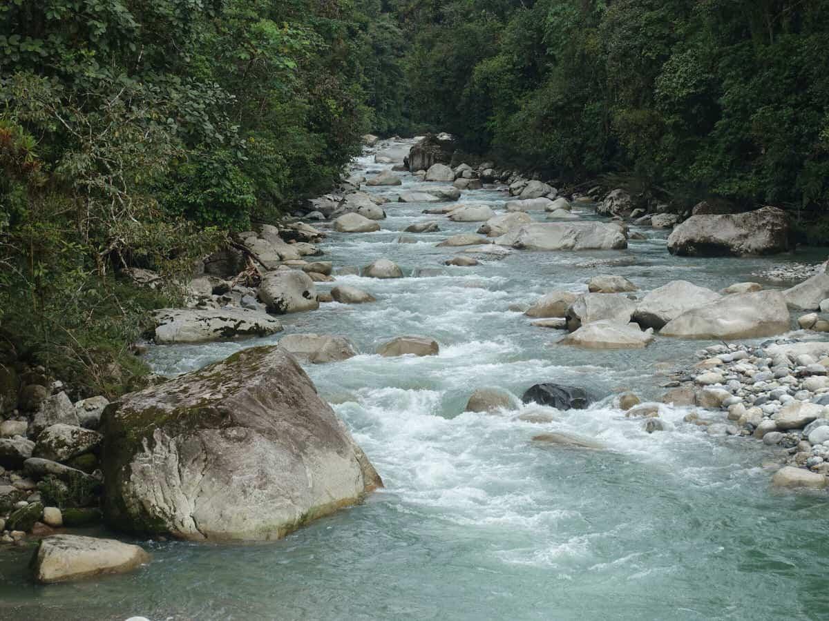 Amazon Ayahuasca retreat in Ecuador, close to Quito