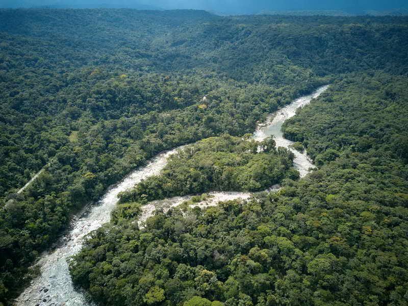 Ayahuasca retreat in Ecuador | Feather Crown healing center